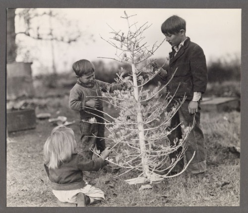 christmas-tree-great-depression