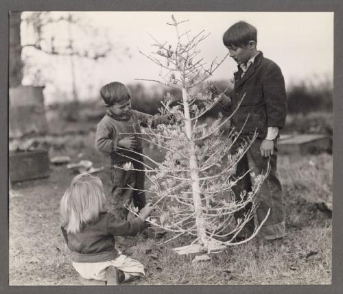 christmas-tree-great-depression